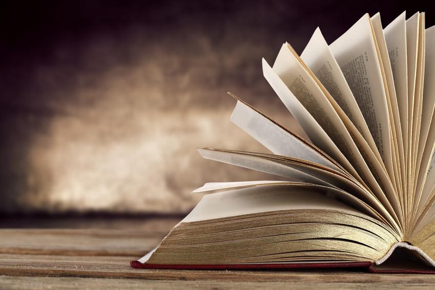 A literatura é uma ambição